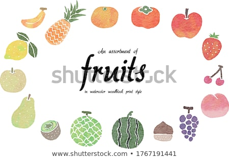 Watercolor illustration of persimmon Stock photo © Sonya_illustrations