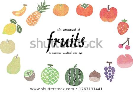 Watercolor illustration of persimmon Stock photo © Sonya_illustrations