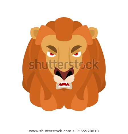 Lion angry emoji. Wild animal evil emotions. Beast aggressive. V Stock photo © popaukropa
