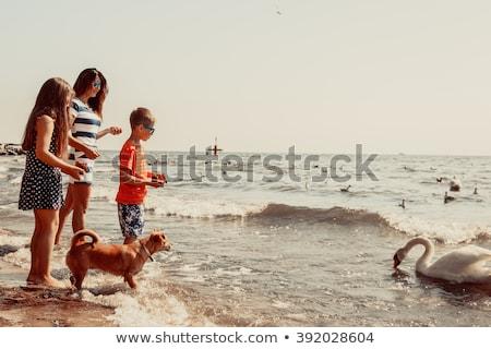marche · famille · quatre · ciel · mains · beauté - photo stock © is2