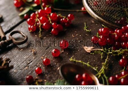 Piros ribiszke fa gyümölcs háttér nyár Stock fotó © M-studio