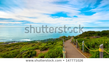Cabrillo monument and San Diego Stock photo © backyardproductions