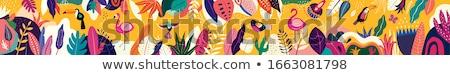 tropical hummingbird banner stock photo © purplebird
