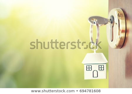 ストックフォト: ドア · キー · ブラウン · フロントドア · 銀 · メタリック