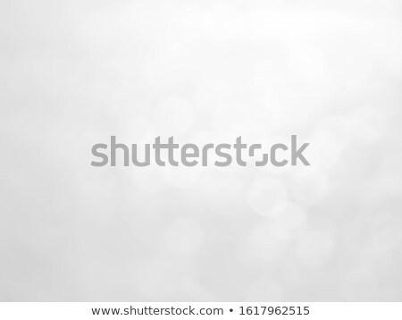zarif · Noel · gümüş · kar · taneleri · sanat · 2016 - stok fotoğraf © olehsvetiukha