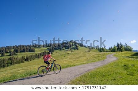Glimlachende vrouw rugzak alpen bergen avontuur reizen Stockfoto © dolgachov
