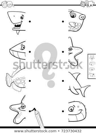 match halves of sea animals educational game stock photo © izakowski