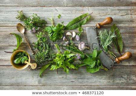 Fresche culinaria erbe prezzemolo rosmarino Foto d'archivio © Digifoodstock