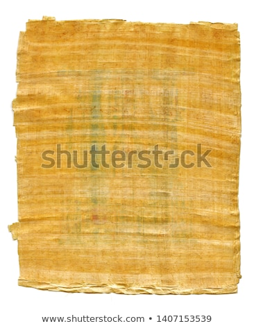 Fragment of Ancient Egyptian papyrus (from The Karnak temple, Thebes valley, Luxor, Egypt).  Stock photo © Glasaigh