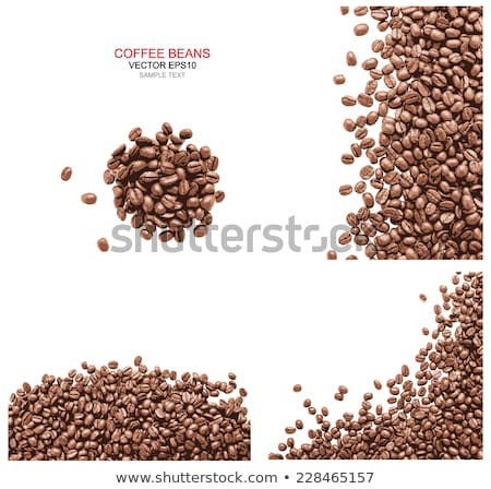 Coffee Beans Isolated. Vector Roasted Ingredients Stock photo © robuart