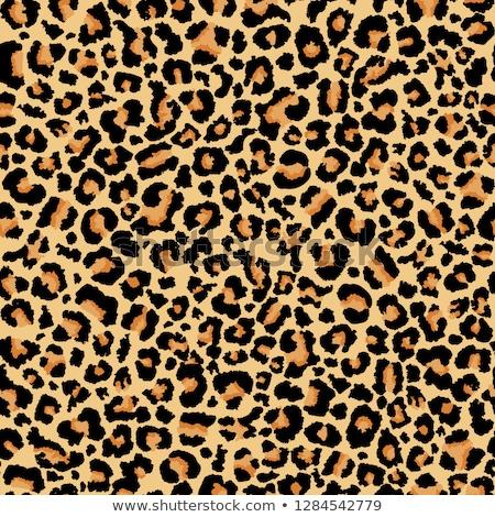 Leopard skin seamless pattern. Cheetah Jaguar animal texture background. Vector Stock photo © Andrei_