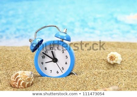 目覚まし時計 ビーチ 砂 晴れた 熱帯ビーチ 水 ストックフォト © AndreyPopov