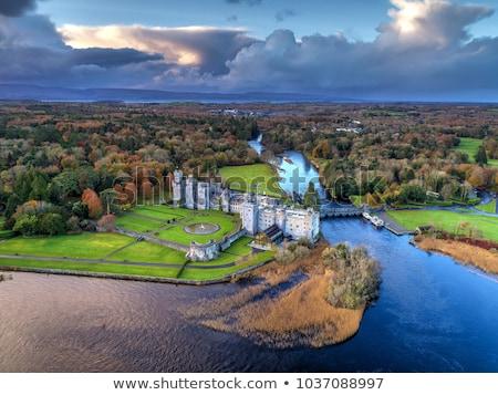 Kasteel Ierland middeleeuwse tuin hotel gothic Stockfoto © borisb17