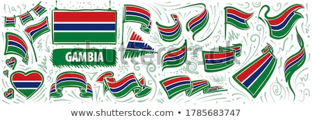 Vector set of the national flag of Gambia in various creative designs Stock photo © butenkow