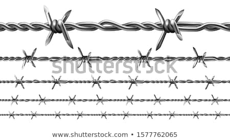 Barbed Wire Strand Stockfoto © pikepicture