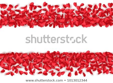 バラの花びら 国境 色 カード 白 新鮮な ストックフォト © inxti