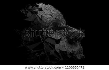 Zwarte 3D abstractie bol edelsteen abstract Stockfoto © FransysMaslo