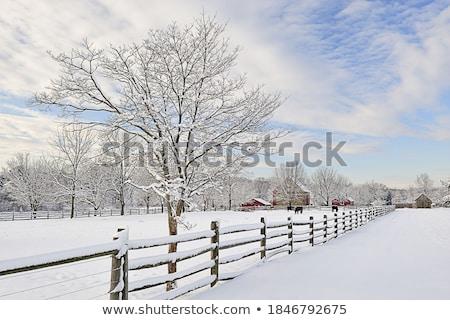 歴史的 ファーム フィールド 冬 空 水 ストックフォト © gwhitton