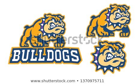 Bulldog Mascot Head Vector Illustration stock photo © chromaco