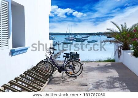 Estany des Peix lake in Formentera Stock photo © lunamarina