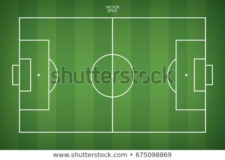 futbol · sahası · beyaz · şerit · yapay · yüzey · çim - stok fotoğraf © borysshevchuk