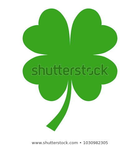 Four-leaved clover Stock photo © zzve