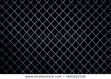 Hemp on wire netting. Stock photo © Leonardi