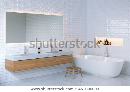 On the toilet - 3D render Stock photo © Elenarts