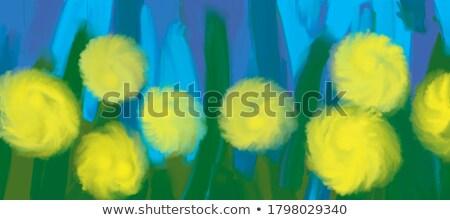 soprar · dandelion · haste · flor · azul · natureza - foto stock © lirch