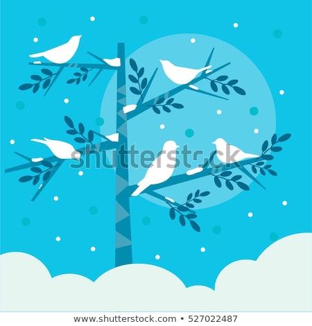 птиц зима дерево природы снега птица Сток-фото © kariiika
