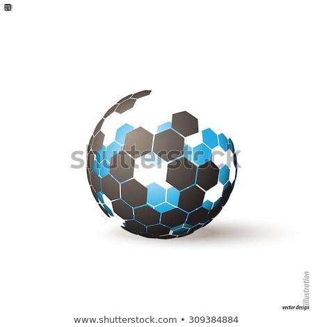 hexagonal background and globe stock photo © silense