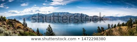 tó · nyáridő · korall · tengerpart · égbolt · felhők - stock fotó © jackethead