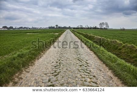 edad · carretera · hierba · verde · campo · tempestuoso · cielo - foto stock © razvanphotography