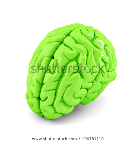 Green human brain close up. Isolate. Contains clipping path Stock photo © Kirill_M