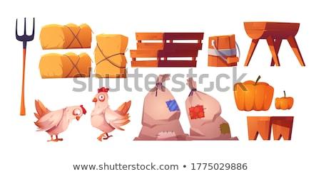 houten · bank · geïsoleerd · witte · stoel - stockfoto © stevanovicigor