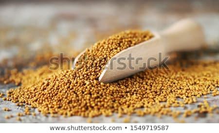Mustár magok konyha forró eszik kanál Stock fotó © yelenayemchuk