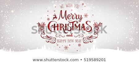 Heiter Weihnachten Glückwunsch Banner Schnee städtischen Stock foto © carodi