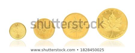 Altın madeni beyaz para Metal kutu grup Stok fotoğraf © rufous