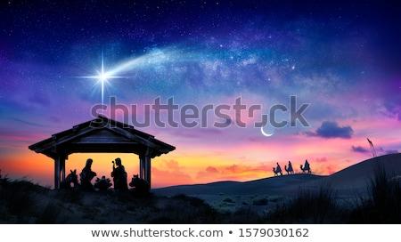 Noel · sahne · örnek · İsa · kar · gece - stok fotoğraf © adrenalina