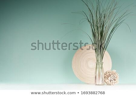 бамбук · зеленый · изолированный · белый · фон · джунгли - Сток-фото © petrmalyshev