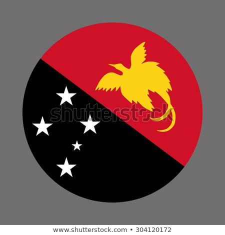 Mapa bandeira botão independente Papua Nova Guiné vetor Foto stock © Istanbul2009