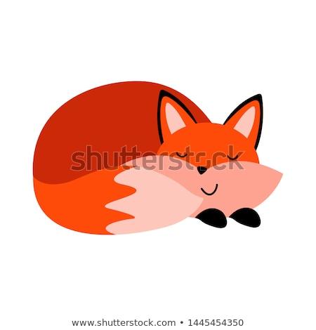 Fox. Single Flat Autumn Icon Stock photo © HelenStock