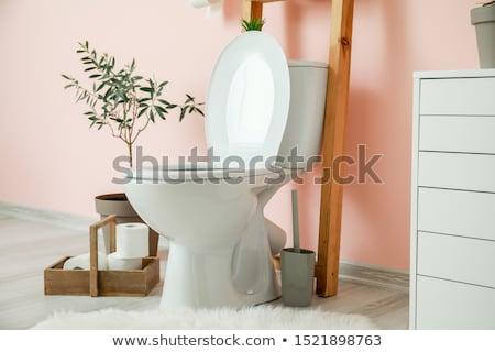 Roze toilet kom geïsoleerd witte bad Stockfoto © PetrMalyshev
