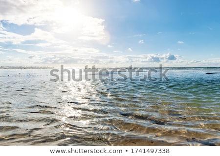 the landscape sea waves  Stock photo © OleksandrO