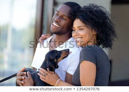 dog couple and kennel Stock photo © adrenalina