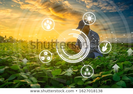 Using modern technology in agricultural activity Stock photo © stevanovicigor