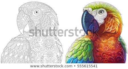 Coloring book page. Sketch outline and color version. Coloring for kids. Childrens education. Vector Stock photo © lucia_fox
