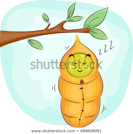 Slapen cartoon rups illustratie gelukkig dier Stockfoto © cthoman