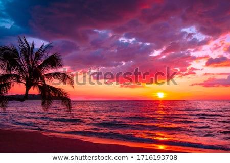 zonsondergang · zee · Geel · licht · eiland · boot - stockfoto © galitskaya