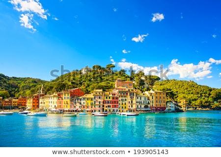 Сток-фото: Италия · мнение · коричневый · здании · морем · замок